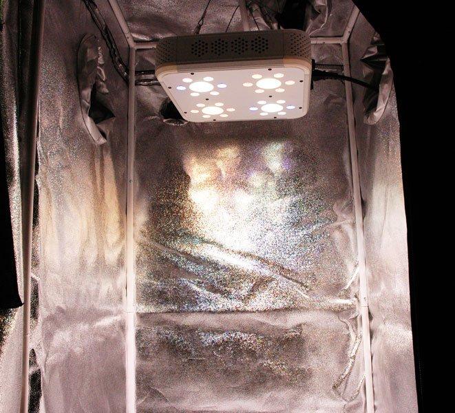 Grow Light mounted inside grow tent