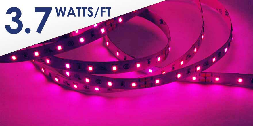 Water Resistant Pink LED Strip Light HH-S2835P-60-24-5M-PINK